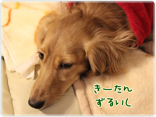 110_20131118140107f88.jpg