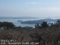 松島を一望