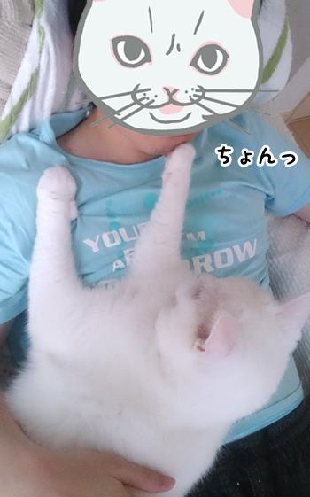 130804_甘えん坊メメタ03