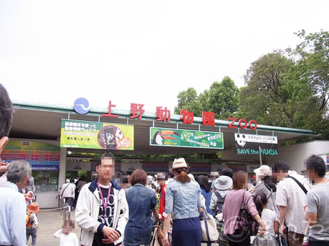 2013上野動物園_1
