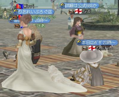 ドレスとニャンコ