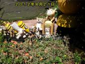 横浜早渕川20120821