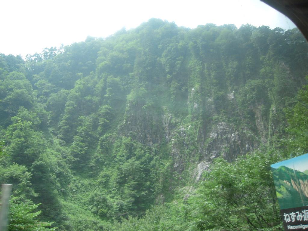 黒部峡谷トロッコ列車☆5