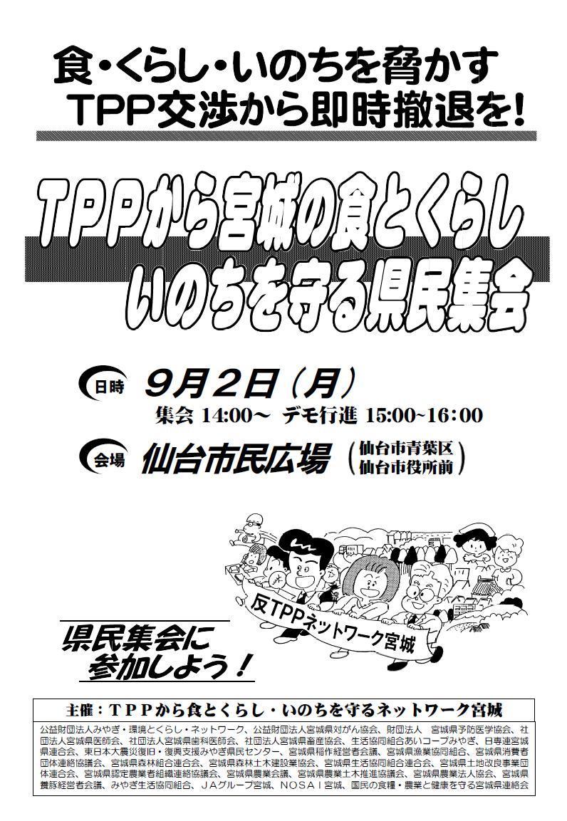 TPPチラシ1