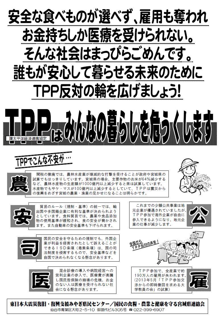 TPPチラシ2