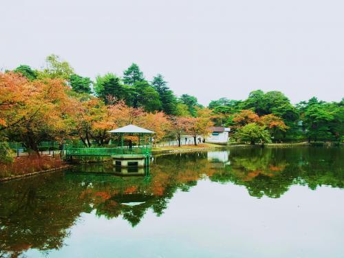 131109-201大宮公園の池(S)