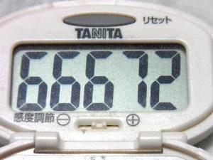 131110-251歩数計(S)