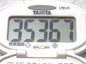 131116-251歩数計(S)