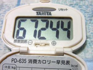 131117-149歩数計(S)