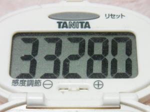 131123-251歩数計(S)