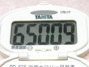 131124-251歩数計(S)