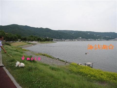 20130623_1.jpg