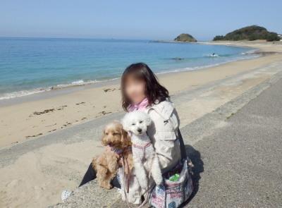 志賀島 海岸-A