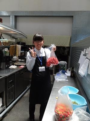 上ノ国高校 職場体験