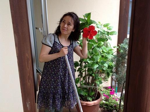 haibi_20130718181619.jpg