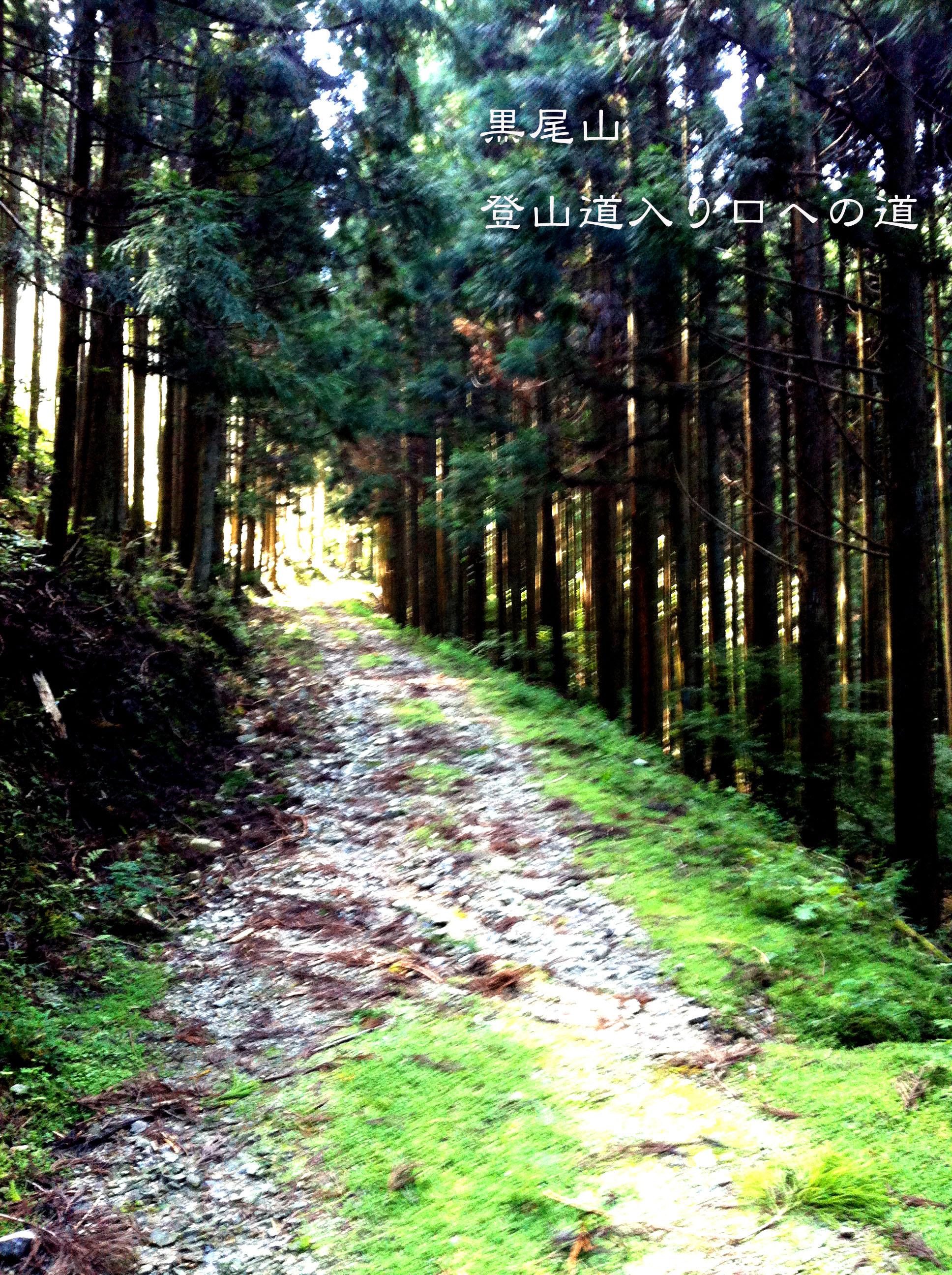 黒尾山3_1