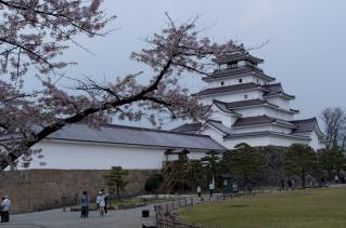 サクラと鶴ケ城
