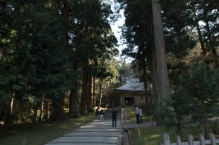 金色堂への道
