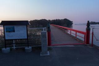 日は出ましたが散歩開始