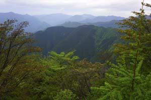 川苔山山頂から雲取山を望む