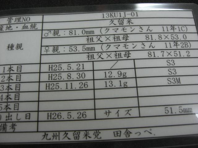 1J-01.jpg