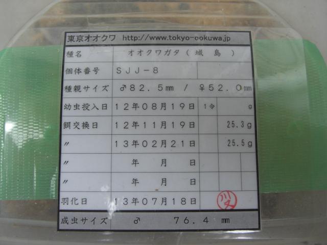 東京城島764管理