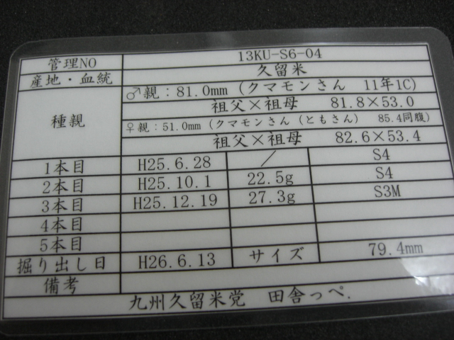 S6-04.jpg