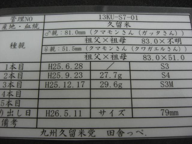 S7-01.jpg