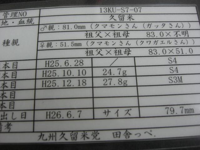 S7-07.jpg