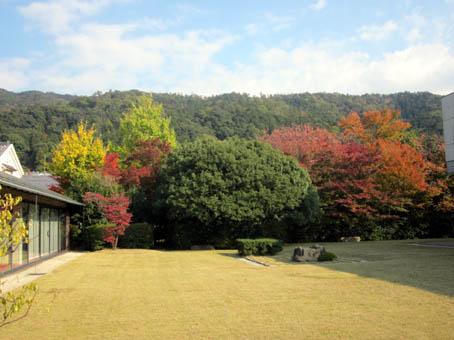 nasengaku4.jpg