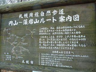 2010 11 385-3121