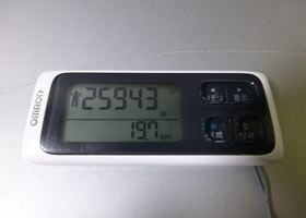 2013 1116 153-2013