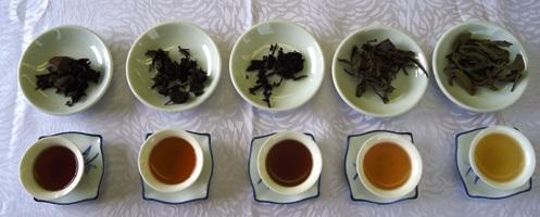 趣味講座(黒茶)