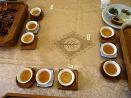 老茶飲み比べ