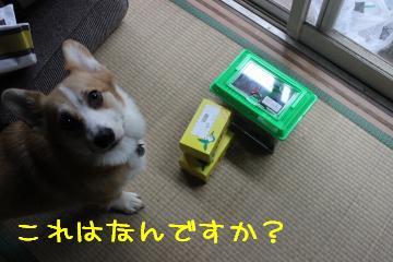 これは何?