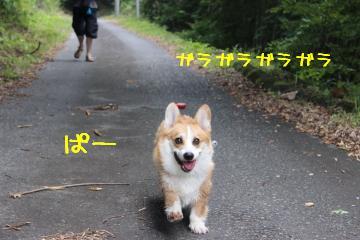 ぱぱぁー♪3