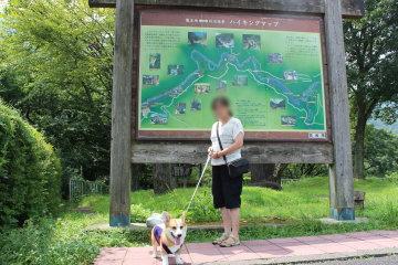 龍王峡の看板