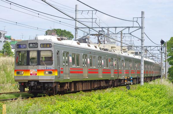 130519todoroki-kaminoge2.jpg