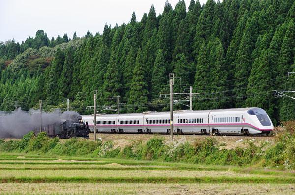 131005yotsugoya-wada9422-1.jpg