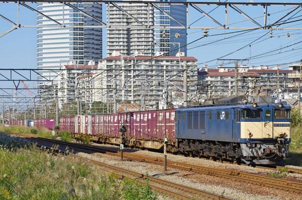 131027shintsurumo72EF641019.jpg