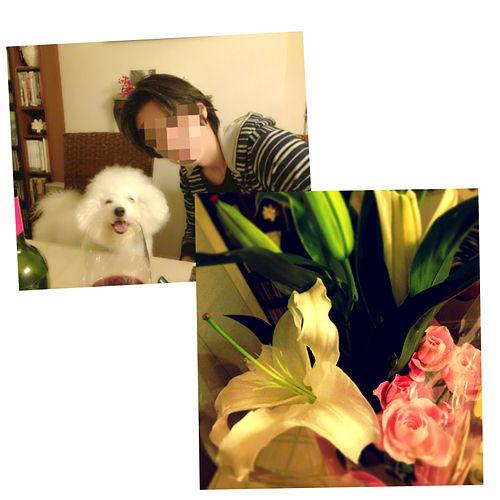 写真 2014-01-29 20 40 40