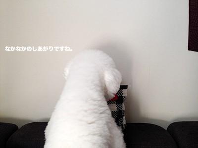 写真 2014-09-16 15 33 05(1)