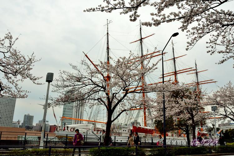 横浜散策1(5)変更済