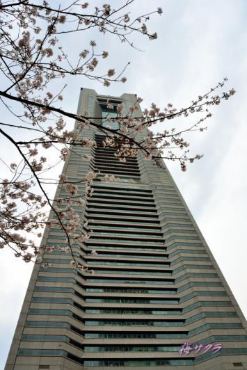 横浜散策1(3)変更済