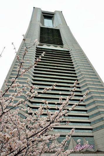 横浜散策1(3-2)変更済