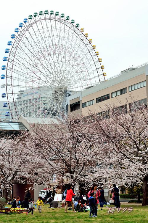 横浜散策2(7)変更済