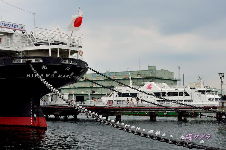 横浜散策5(2)変更済