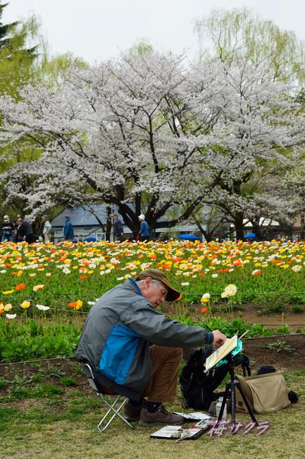 昭和記念公園1(3)変更済