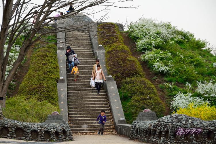 昭和記念公園6(3)変更済