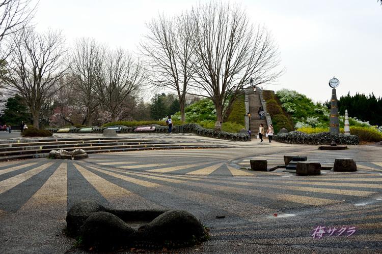 昭和記念公園6(4)変更済